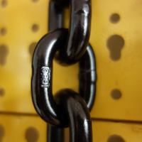 CE Approved Exceptional Service Painted g80 Steel lifting link chain sling