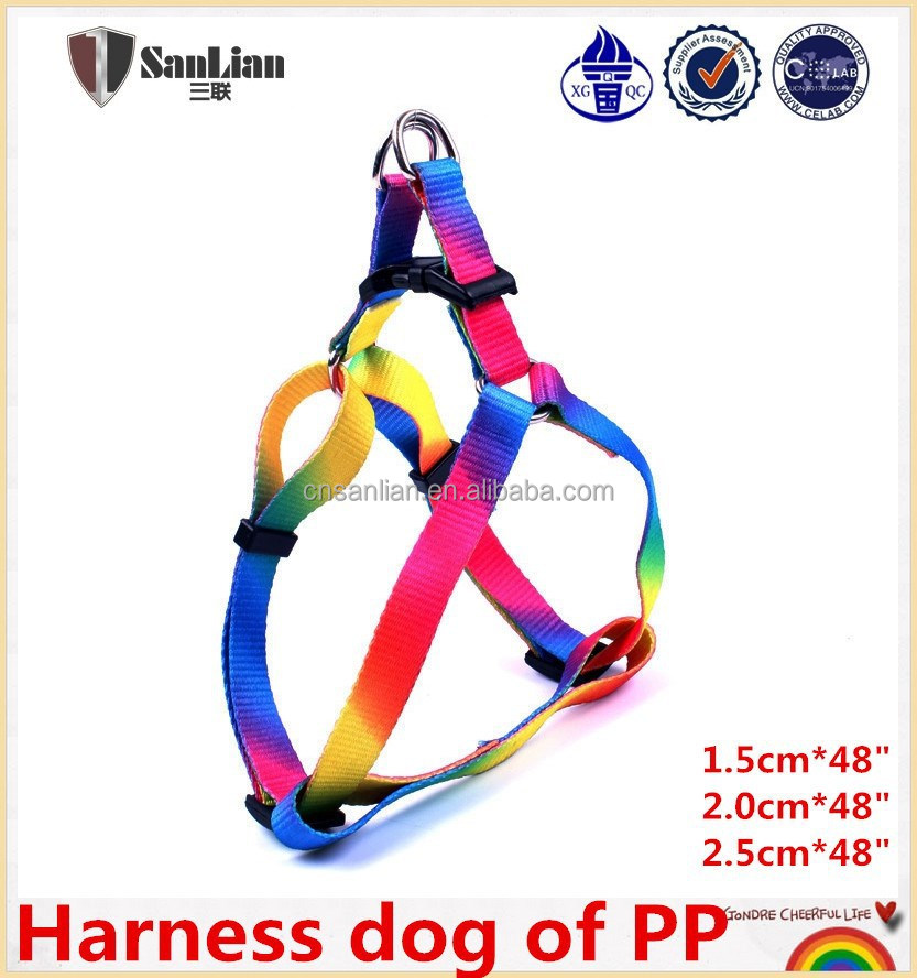 Rainbow colorful harness dog of pp
