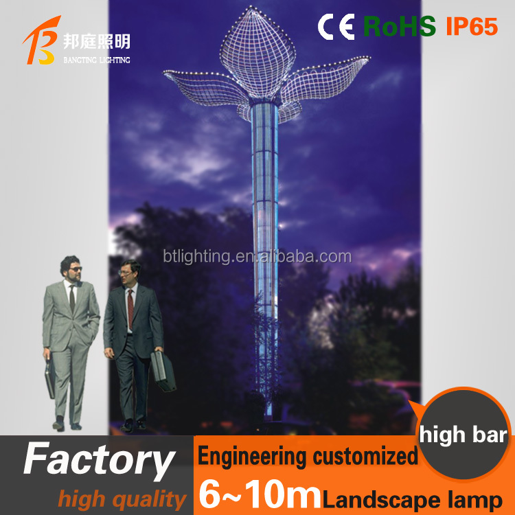 Outdoor Decorative Led Color Changing