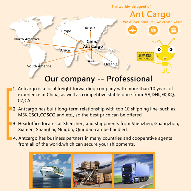 Top 10 International Logistics Freight Forwarder Cargo Shipping Company  Agent Service In China - Buy Freight Forwarder Sea Freight China To