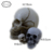 Small Human Resin Skull Heads Model for Party