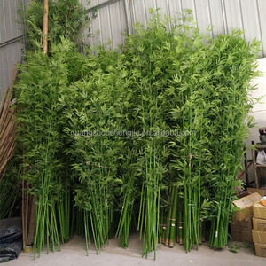 SJ13001230 Landscaping decorative real wood bambu plant tree