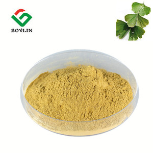 Factory Supply Organic Ginkgo Biloba Leaf Extract Powder for Ginkgo Biloba Capsule