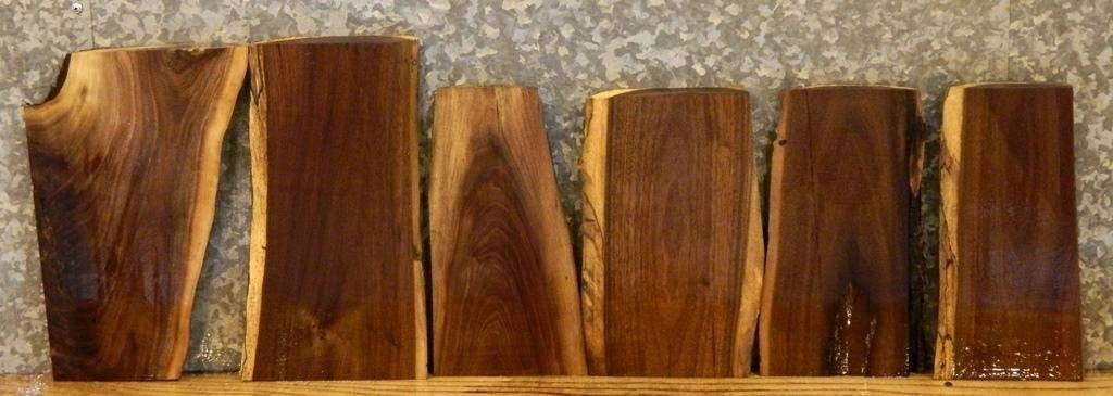 6- Partial Natural Edge Black Walnut Taxidermy Base/Craft Pack Slabs T: 1 1/8'', W: 8 3/4'', L: 14 1/8'' - 40534-40539