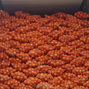 New crop 5- 7cm siize red and fresh onion price/market price for red onion