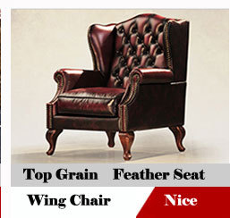 Hollywood Gold Stainless Steel Frame Leather ArmChair