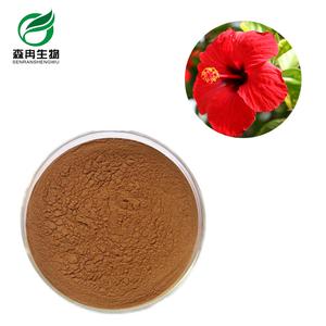 Hibiscus Rosa Sinensis Flower Extract Powder Wholesale Powder