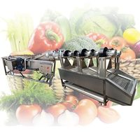 Factory Price Air Bubble Food Cleaning Fruit Washing Vegetable Blanching Machine
