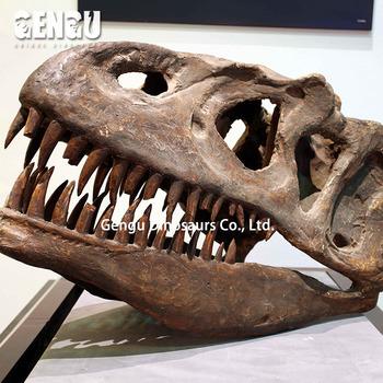 sufficiente maledizione tuono  Fiberglass Dinosaur T-rex Skull For Sale Dinosaur Fossils - Buy ...
