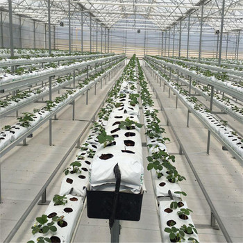 Greenhouse hydroponics and growing system PVC Cultivation bag plastic trough