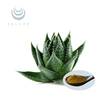 mango leaves extract and coconut as an antibacterial ointment Your ent can prescribe an external ointment to treat the mild antibacterial properties that are found in the crush 3 soft mango leaves so as to extract the.