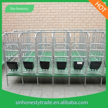 Hot Sale Gestation Stall For Sow