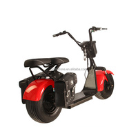 Citycoco / Seev / Woqu 2 Wheel 1000W Electric Powered Go Kart Scooter Ce / FCC / RoHS / UL
