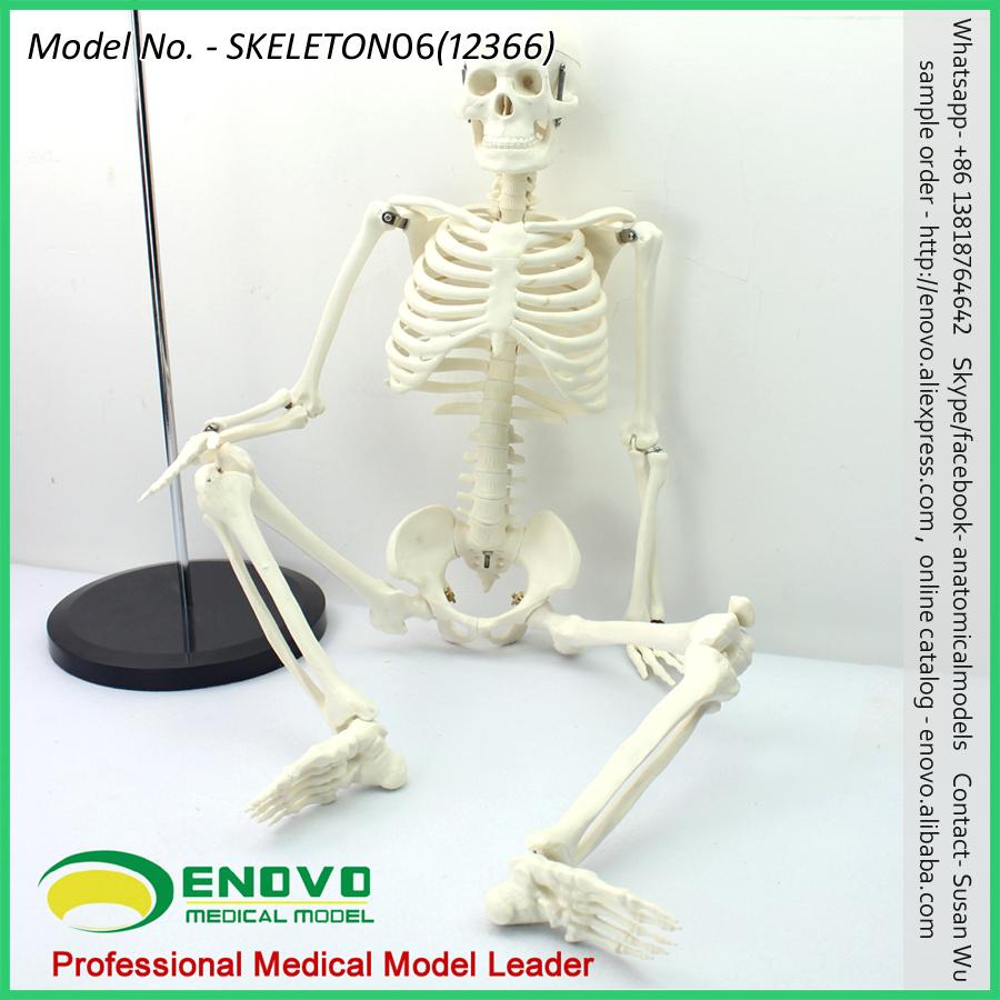Skeleton deporte