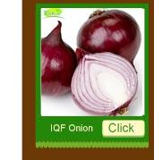 supply IQF / frozen fresh Sweet Corn kernels/corn on the cob/cut, juicy, high brix, super middle