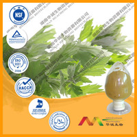 Pure Wormwood Plant Extract chinese herb medicine