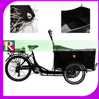 3 wheel pickup truck pedal cargo tricycle electric cargo trike