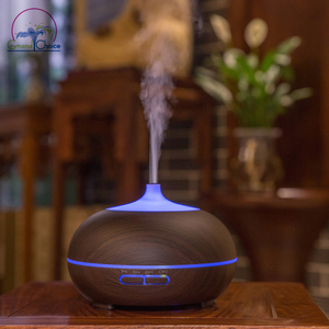 Multifunctional porous wholesale aromatherapy diffuser ultrasonic mist maker with warm and colorful led