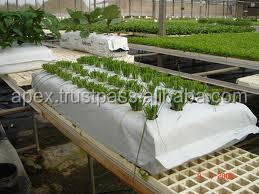 Hydroponics Plant growth coir peat growbags