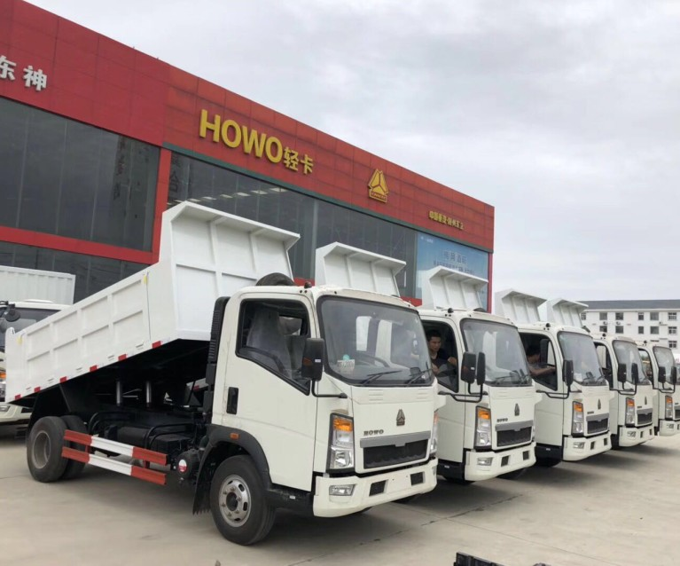 Factory direct sales HOWO 4*2 dump truck 밀고 자 트럭 대 한 \ % sale in 필리핀