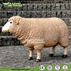 Life Size Resin Animals of Sheep