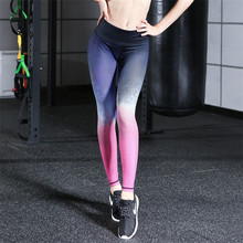 Seamless Gym Legging Workout Sports Athletic Yoga Active Pants with Printing Shade