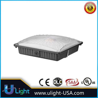 New arrival outdoor canopy lights of China National Standard