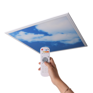 Indoor Ceiling Decoration LED Lighting Slim Sky LED Panel 6060 40W Recessed Ceiling Light