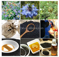 Factory manufacture wholesale black cumin seed oil pakistan for hair care