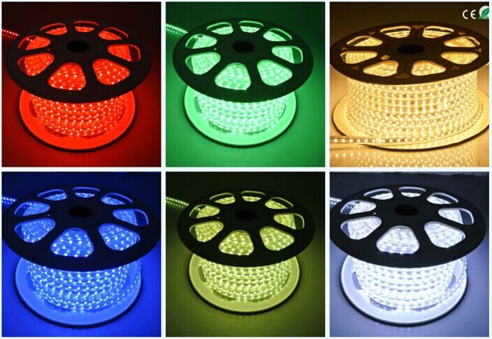 100m/50m AC110V 220 240 Volt Led Rope Light Cuttable Flexible Smd5050 Led  Strip Waterproof