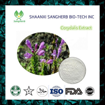 Chinese Natural Plant extract Rhizoma corydalis extract powder/Rhizoma corydalis P.E/Corydalis yanhusuo extract by TLC