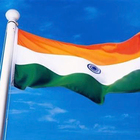 Custom promo Polyester printing India indian national country flag with pole