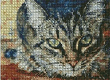 Cat in Splattered Colors Counted Cross Stitch Kits 200x228stitch 47x52cm Counted cat Cross Stitch Kits