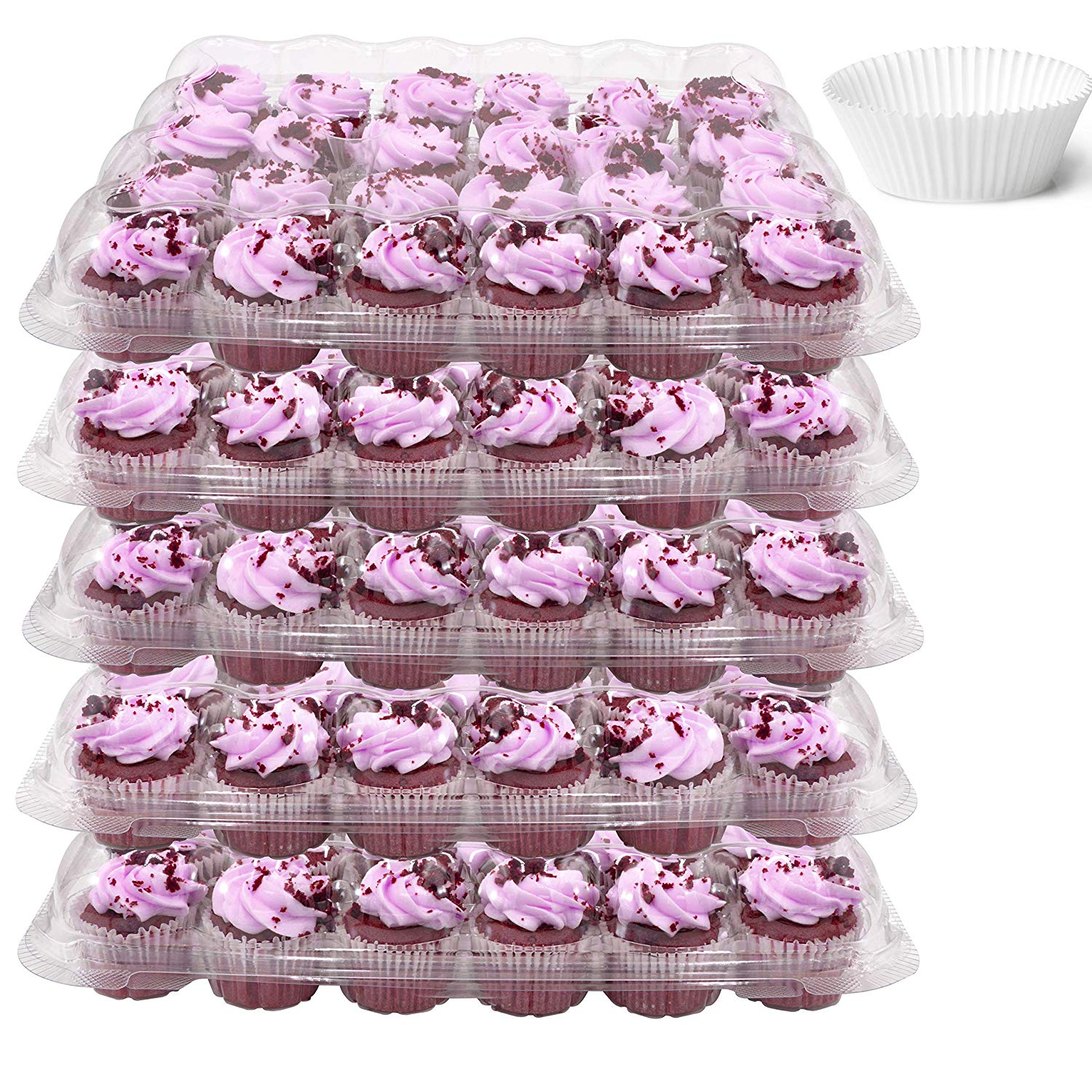 Pack of 50 Katgely Mini Cupcake Container for Dozen Mini Cupcakes