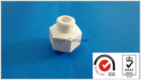 Super performance customized 95% alumina ceramic screw and nut with high temperature resistance