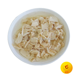 Canned king oyster mushroom 425G in brine for Algeria Market