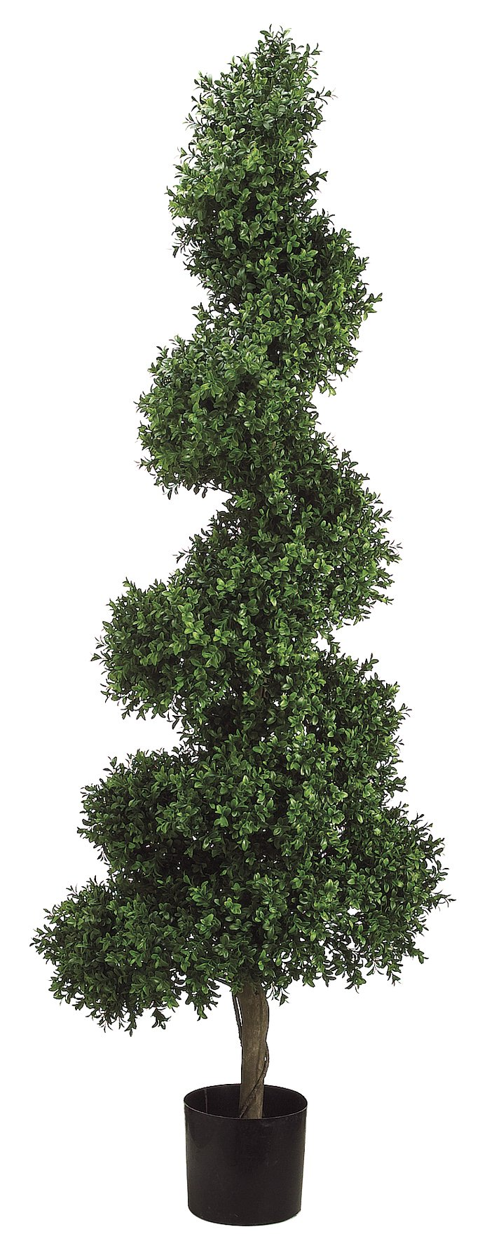 Silk Decor 5.5-Feet Spiral Boxwood Topiary Plant, Green/Two-tone