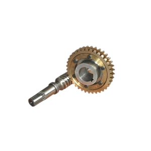 Custom brass worm gear with worm