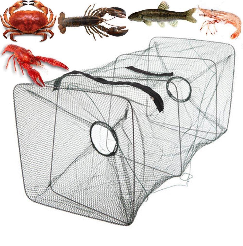 Как поймать рыбы руками