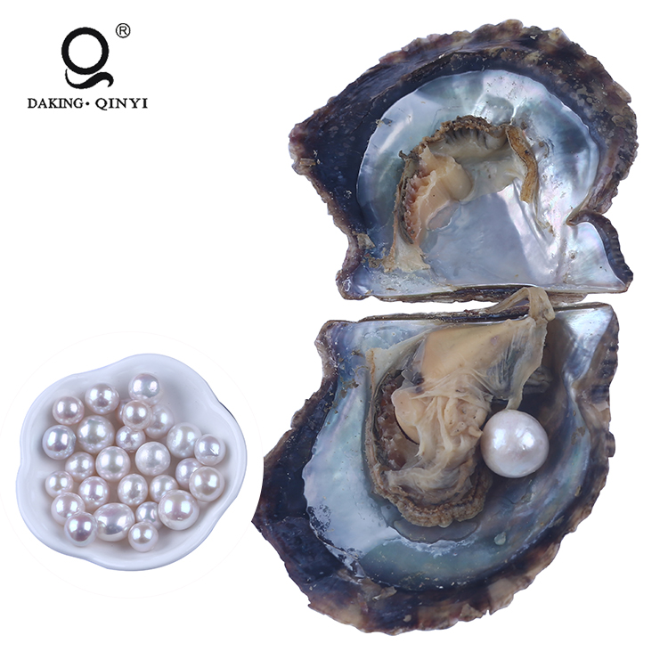 Wholesale 7-8Mm Natural Akoya Silver Pearl Oyster For Kinds Of Artware
