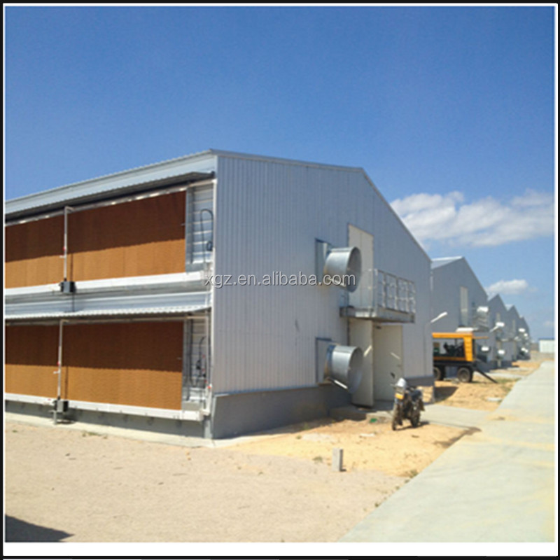 chicken egg and broiler house poultry farm design