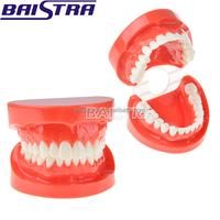 Buy Denture teeth for sale Valplast denture resin | denture making ...