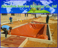 Biogas Power Plant 30Kw Cogeneration 20Kw Biogas
