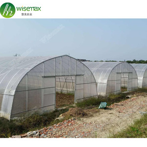 Hot galvanized steel industrial plastic thermal screen greenhouse for sale