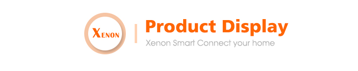 Xenon 105 Degree Hot Sale WiFi Smart P/T IP camera works with Alexa