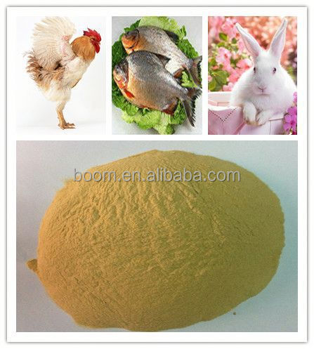 Protein feed yeast animal feed