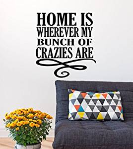 Funny decals, family wall decal, home decor, love wall decal, Vinyl Wall Decor, wall stickers, wall decal, funny quote, funny decal XE11