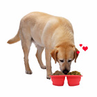 New Wholesale Design Double Tray Pet Bowl Silicone Collapsible Dog Bowl