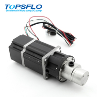 High pressure low noise micro dc brushless electric gear pump