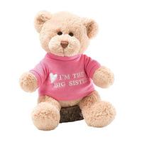 Shenzhen Factory Custom High Quality Lovely Plush Stuffed Teddy Bear